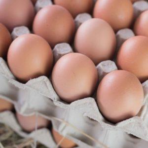 Eier braun Größe M