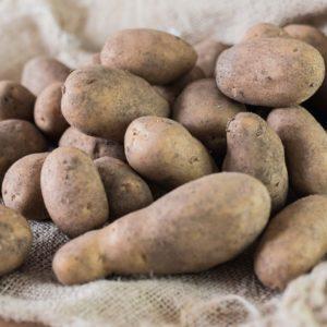 Kartoffeln DITA