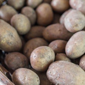 Kartoffelnkrone